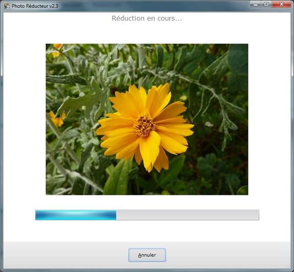 logiciel reduire taille photo, logiciel pour reduire taille photo, retouch photo en ligne