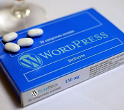 Notice Utilisation de WordPress boite 180x160