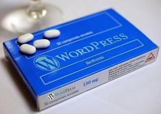 Notice d'utilsation de WordPress à lire attentivement avant de créer son site