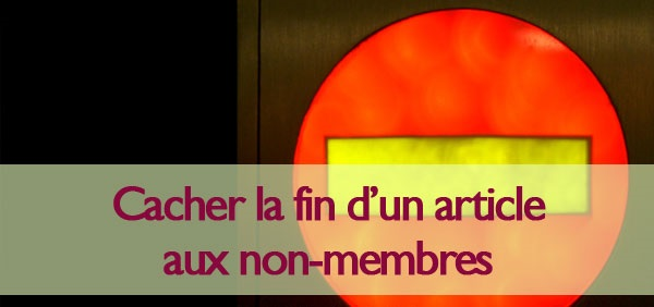 cacher la fin d'un articles wordpress