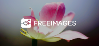 Site Freeimages.fr photos et illustrations gratuites